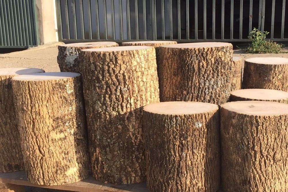 Bosques naturales bosques naturales y venta de madera produccion de madera de calidad - Tronco madera decoracion ...